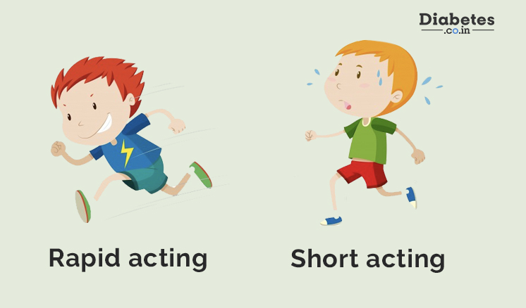 rapid acting and short acting insulin